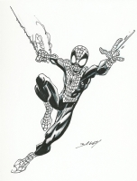 Ultimate Spider-Man by Bagley Comic Art