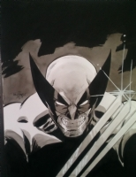 Wolverine by Scott Dalrymple Comic Art