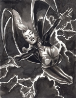 Storm by J.K. Woodward Comic Art