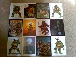 Teenage Mutant Ninja Turtles (TMNT) Dark Themed Collage Poster Comic Art