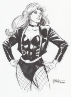 Black Canary  Comic Art