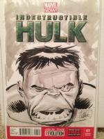 Hulk by Lee Weeks Comic Art