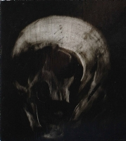 Phil Hale Skull #3, Comic Art