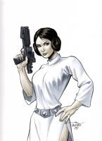 Star Wars - Princess Leia by Scott Dalrymple Comic Art