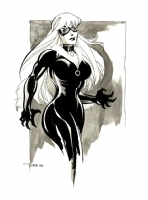 Black Cat by Tim Sale Comic Art