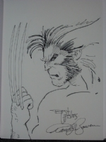 Wolverine by Randy Bowen Comic Art