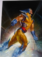 Wolverine By Julie Bell Comic Art