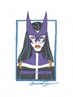 2006 Amanda Conner - Huntress Comic Art