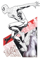 Amazing Spider-Man #3 cover with Black Cat, Comic Art