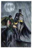 Batman and Robin on a Gargoyle by Ed Tadeo  Comic Art
