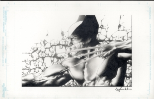 Jay Anacleto  Wolverine pin up  Comic Art