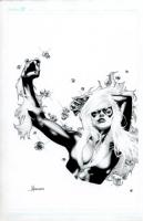 Black Cat by Jay Anacleto  Comic Art