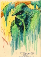 Swamp Thing Comic Art