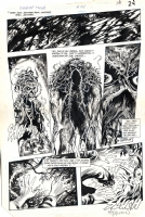Swamp Thing 44 pg. 24 Comic Art