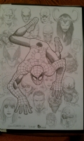 Amazing Spider Man #100 Sara Pichelli Addition Comic Art