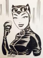 Catwoman 013 Comic Art