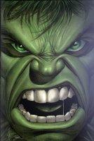 Yoram Matzkin's ..Dale�Keown Hulk Comic Art