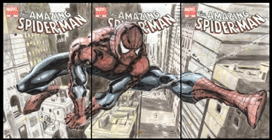 Amazing Spider-Man #648 Blanks (3), Comic Art