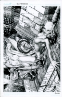 Catwoman by Jay Anacleto Comic Art