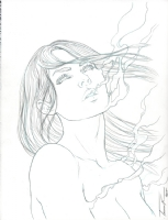 Beauty #1 variant cover pencils, Comic Art