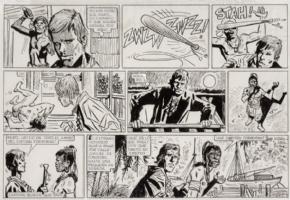 capitan cormorant Comic Art