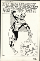 Amazing Spider-Man 3 Pin-Up Comic Art