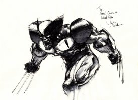 Javier Saltares WOLVERINE Comic Art
