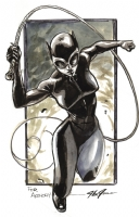 Catwoman by J. G. Jones Comic Art