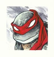 Eric Talbot-TMNT Comic Art