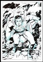 D. Cooke - Superman Comic Art