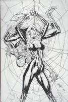 J. Scott Campbell - Spidey & Black Cat - Caught in the WEB Comic Art