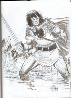 Garney, Ron -- Prince Valiant, Heroes Con 2012 Comic Art