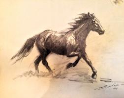 Running horse, by Antonio Bernal (1972) Comic Art