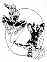 Spider-Wing' Spider-Man & Nightwing by Sal Velluto & Bob Almond Comic Art