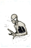 Spider-Man by Olivier Coipel, Comic Art