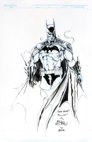 Batman by Ethan Van Sciver, Comic Art