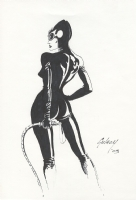 Catwoman by Paul Gulacy Comic Art