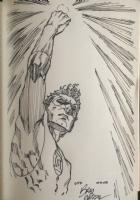 Green Lantern by Brad Walker Comic Art