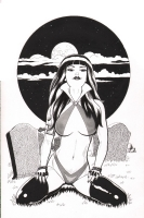 Vampirella Commission, Comic Art