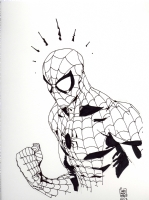 Spiderman Comic Art