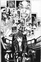 Catwoman 69 Cover Adam Hughes Comic Art