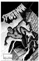 Spider-Man inked by Neil Vokes, Comic Art