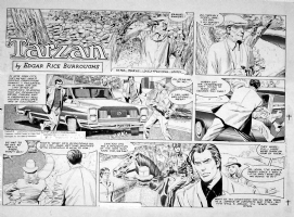 MORROW, GRAY - Tarzan sunday 5-17-87 Comic Art