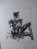 Catwoman by JG Jones Comic Art