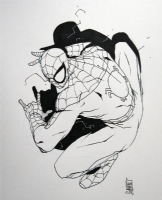 Spiderman - Camuncoli Comic Art