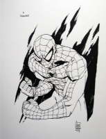 Spiderman 2 - Giuseppe Camuncoli Comic Art