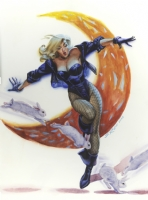 Steve Rude Black Canary pinup Comic Art