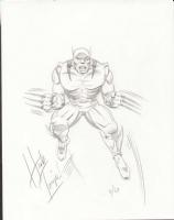 Herb Trimpe - classic Wolverine! Comic Art