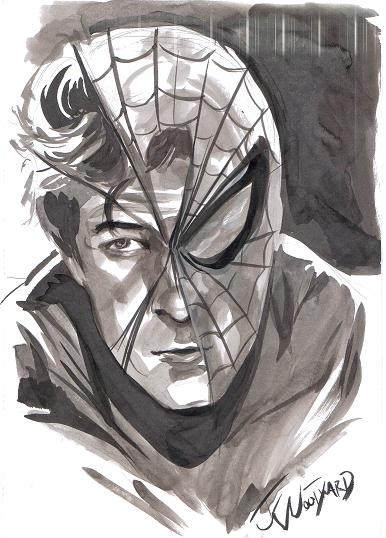 Andrew Garfield as Spider-Man/Peter Parker (The Amazing Spider-Man) by J.K. Woodward (Wild Pig Comics Signing, December 1, 2012) Comic Art