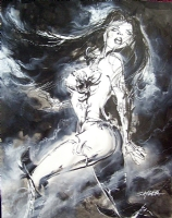 WitchBlade: Bewitching Sara by Stuart Sayger Comic Art